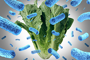 Bacterial Residue on Vegetables