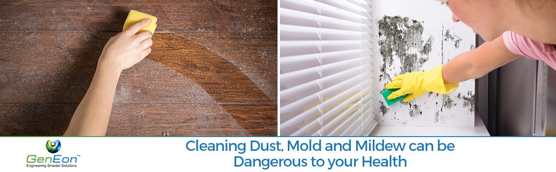 Cleaning Dust and Mildew