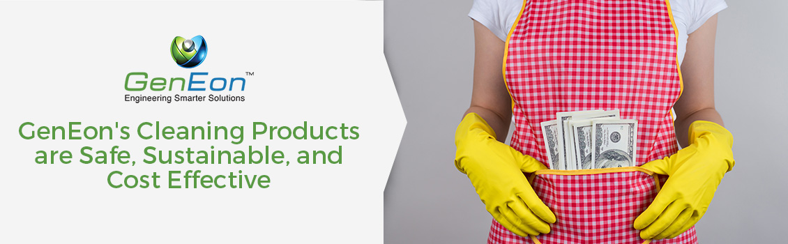 Saving Costs on Cleaning Products